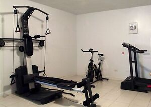 Weider Platinum Home Gym