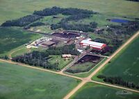 Pristine Equestrian Facility Close to Camrose