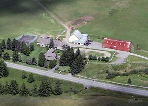 NOVA SCOTIA HORSE FARM FOR SALE!
