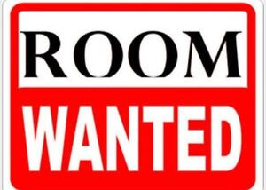 Looking for a room to rent Aug 2016 for 16 weeks
