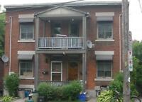 Fantastic and Affordable 1 Bed Basment Apartment in The Glebe!