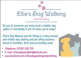 Ellie's Dog Walking and Pet Sitting