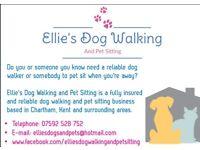 Ellie's Dog Walking and Pet Sitting