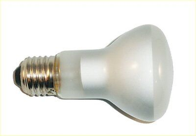 Universal 50W Incandescent Popcorn Machine Replacement Light Bulb Heat Warming