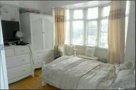 Single Room Immediately Available