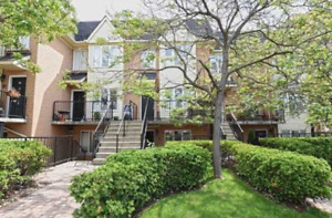 Vibrate King West, Yours To Own!! Magnificent 'The Kings' Townho