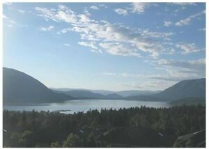 FULLY SERVICED SALMON ARM