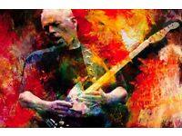 David Gilmour tickets for September 2106 @ Royal Albert Hall