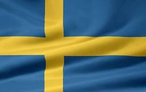 Swedish tutoring Caringbah Sutherland Area Preview