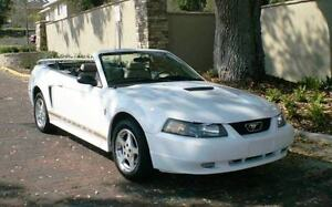 Ford mustang white hood for sale