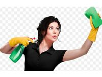 Zeeni Cleaning Services