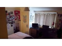 EN SUITE DOUBLE ROOM - (RENT INCLUDES ALL BILLS) SOCIAL STUDENT HOUSE, 3MIN WALK FROM UEA