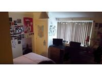 EN-SUITE DOUBLE BEDROOM IN A STUDENT HOUSE, BILLS INCLUDED, 5 MIN WALK FROM UEA