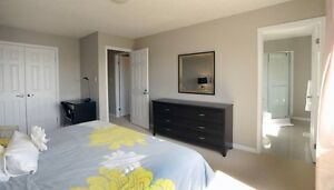 Executive Furnished Rooms, Private Suites and House Kitchener / Waterloo Kitchener Area image 4