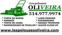 SERVICES DE PELOUSES BON PRIX!! - LAWN CARE - COUPE GAZON