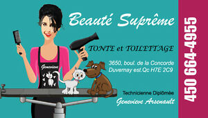 GROOMING SALON FOR DOGS AND CATS BEAUTÉ SUPRÊME