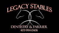 Equine Dentistry Specialist