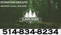 ÉLAGAGE GAGNON - ÉMONDAGE - TAILLE HAIE - 514-834-8234