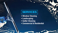 Window Cleaning Special!
