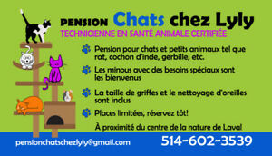 PENSION Chats chez Lyly