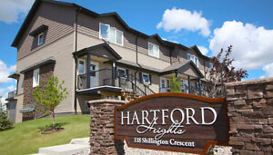 3BR Condo Rental in Blairmore | Monthly Support Available