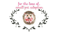 For the love of in relation of the LITTLE BEAR FOUNDATION