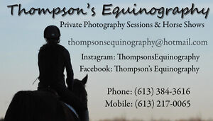 Professional Horse Photography