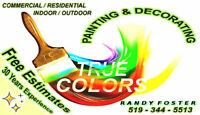 Professional Residential/Commercial Painter