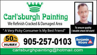Professional Painters 50% Discount