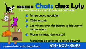 PENSION Chats chez Lyly Opening 17th of july
