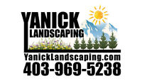 FALL CLEANUP SPECIAL $149!  CALL 403-969-5238