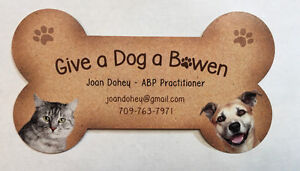 Is your pet in pain?  Animal Bowen Physiotherapy now available!