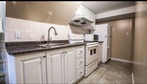 Bright 2 bedroom basement for rent  Bayview Ave / Green Ln