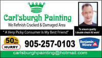 Professional Painter 50% OFF