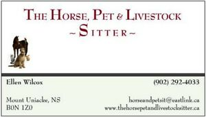 Trustworthy cat, dog, horse and livestock sitter available