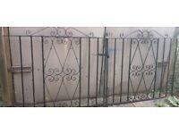 Double steel/wrought iron gates