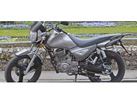 *Brand New* 66 plate Zontes Monster 125. Warranty. Delivery. Part-Ex, Learner legal