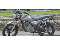 *Brand New* 66 plate Zontes Monster 125. Warranty. Delivery. Part-Ex, Learner legal 18-11