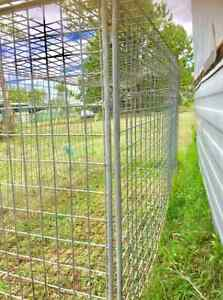 TRUCK DOG CAGE 7 FOOT LONG DOOR SUIT UTE or TEMP HOLDING PEN $100 Park Ridge South Logan Area Preview
