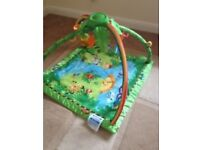 Fisher Price Gym Mat Baby Infant clean smoke free pet free home good condition