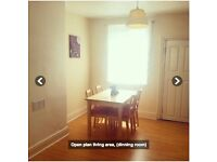 Double Rooms in Professional House - Banner Street