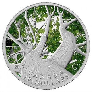 2013 $20 SPRING MAPLE CANOPY COIN West Island Greater Montréal image 1
