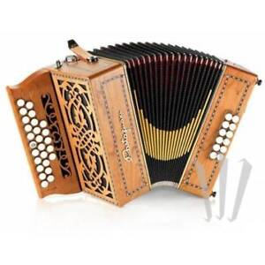Accordeon castagnary dony ou similaire  d'occasion