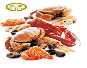 For Sale: Profitable Wholesale Seafood Distribution Company