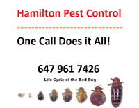 Hamilton Pest Control- Treating All Pests- 50% OFF All Services!