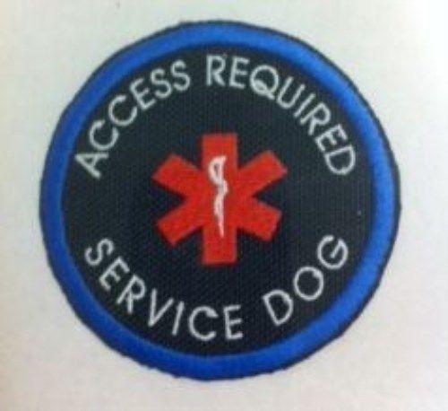 Service Dog In Training Vest Calgary