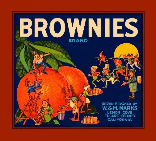 Lemon Cove Tulare Brownies #1 Orange Citrus Fruit Crate Label Vintage Art Print