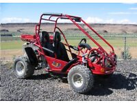 Excellent 2 seater buggy just serviced open too offers cash either looking scrambler or quad