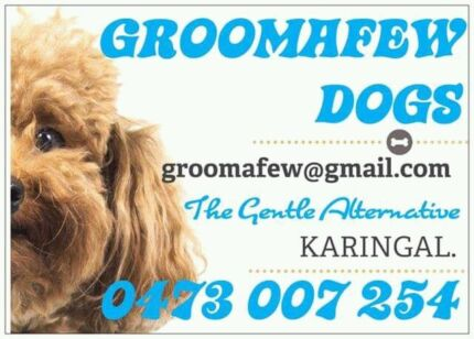 GROOMAFEW DOGS Caring for your beloved pet. Local Dog Groomer