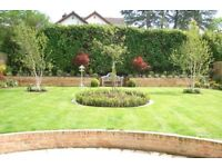 garden landscape &property maintenance